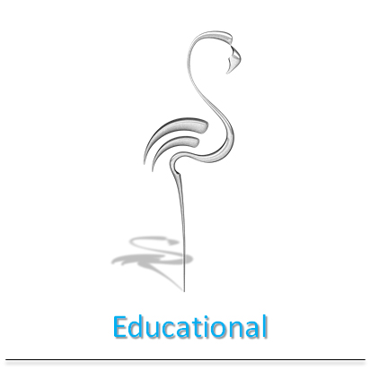 flamingo-educational-verona-mr-services